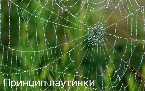 Принцип паутинки